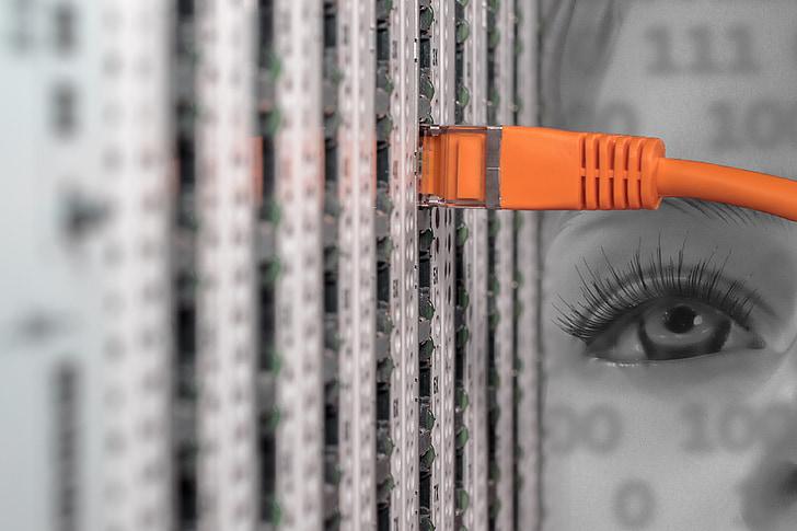 为什么企业租用服务器比购买服务器更加有优势?